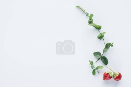 Photo for Top view of strawberries and mint branches on white surface - Royalty Free Image