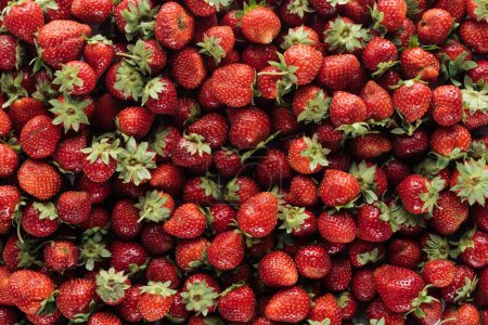 Photo for Full frame shot of ripe strawberries for background - Royalty Free Image