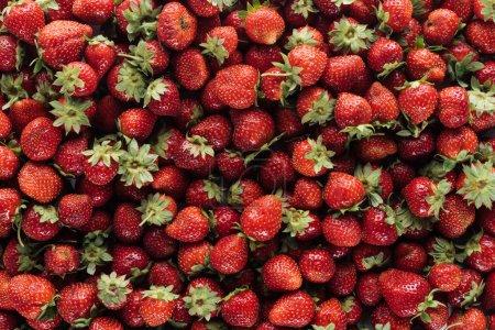 full frame shot of ripe strawberries for background