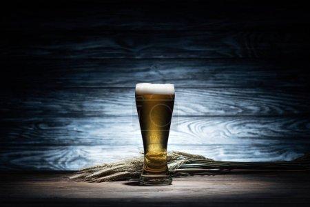 vaso de sabrosa cerveza y espiguillas de trigo en la mesa de madera, concepto oktoberfest