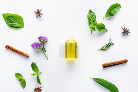 Photo pour Vue du dessus de bouteille d'huile essentielle naturelle, bâtonnets de cannelle, oeillet et feuilles vertes éparses isolées sur blanc - image libre de droit