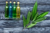 row of colored bottles with natural herbal essential oils and twig with green leaves on wooden surface