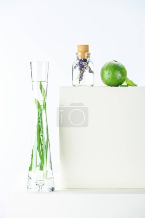 transparent bottle and vase of natural herbal essential oils and lime on white surface