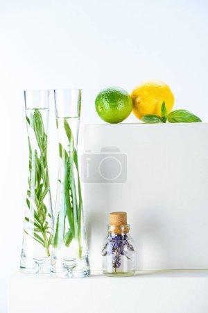 Foto de Botella transparente y jarrones de aceites esenciales de hierbas naturales y cal con limón en la superficie blanca - Imagen libre de derechos
