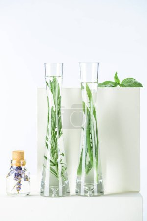 Photo for Vases and bottle of natural herbal essential oils with herbs and flowers on white surface - Royalty Free Image