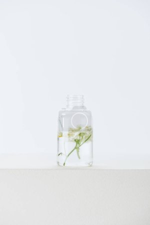 bottle of natural herbal essential oil with chamomile flowers on white surface