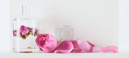 Photo for Bottle of natural herbal essential oil with pink roses on white surface - Royalty Free Image