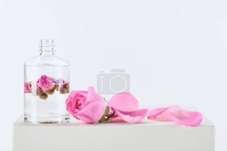 Photo for Bottle of aromatic essential oil with pink roses on white surface - Royalty Free Image