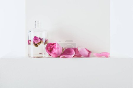 Photo for Transparent bottle of natural herbal essential oil with pink roses on white surface - Royalty Free Image