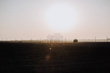 scenic view of field and electric towers during sunset in countryside