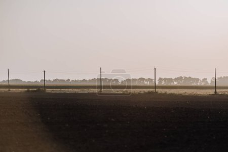 Photo for Rural scene with field and electric towers in countryside - Royalty Free Image