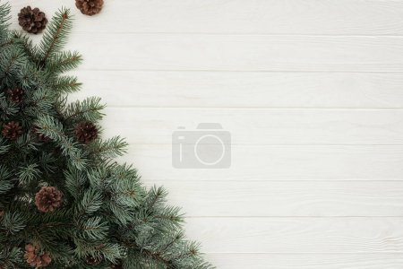 top view of beautiful green fir twigs with pine cones on white wooden background
