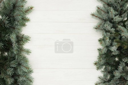 Photo for Top view of beautiful evergreen fir twigs on white wooden background - Royalty Free Image