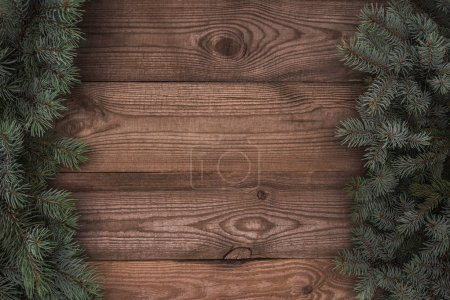 top view of beautiful evergreen coniferous branches on wooden background