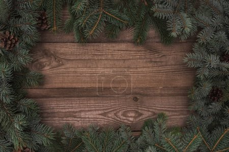 beautiful evergreen coniferous branches and pine cones on wooden background