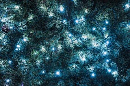Photo pour Branchettes de sapin magnifique avec guirlande lumineuse, fond de Noël - image libre de droit