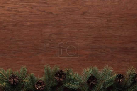 top view of evergreen fir trees and pine cones on wooden background