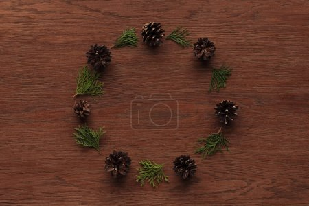 beautiful evergreen coniferous twigs and pine cones on wooden background