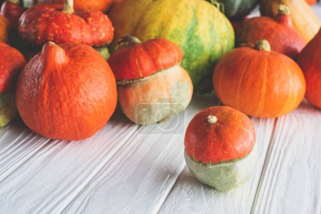 pile of ripe autumnal pumpkins on wooden tabletop