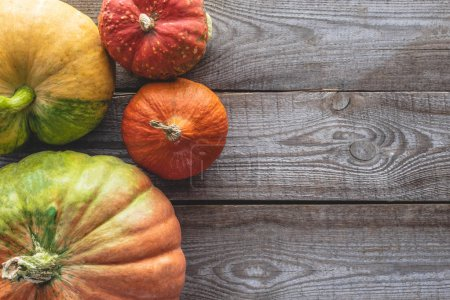 Photo for Elevated view of ripe autumnal pumpkins on grey wooden table - Royalty Free Image