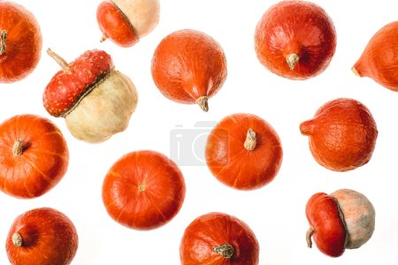 top view of scattered ripe pumpkins isolated on white