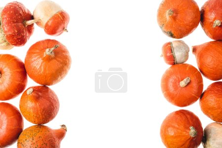top view of autumnal orange pumpkins isolated on white