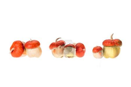 Photo pour Pieux de mûres citrouilles automnales isolés sur blanc - image libre de droit