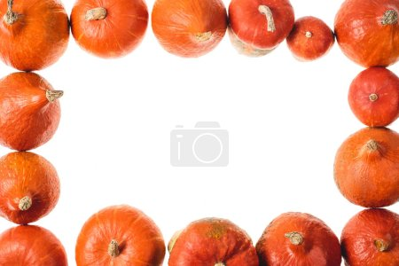 Photo for Top view of frame of orange pumpkins isolated on white - Royalty Free Image