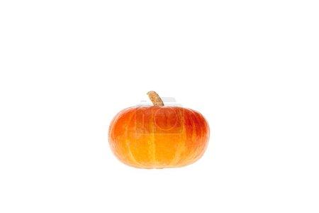Photo pour Un orange citrouille automnale isolé sur blanc - image libre de droit