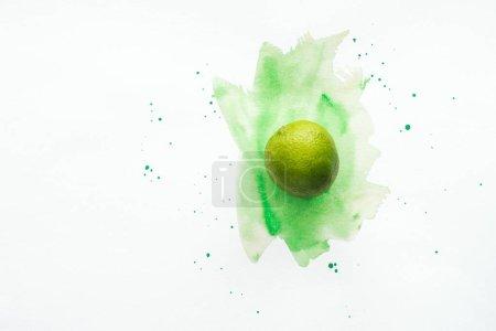Photo pour Vue de dessus de toute la chaux mûre sur la surface blanche avec aquarelle verte - image libre de droit