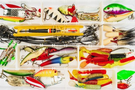 elevated view of fishing tackle and bait in plastic box