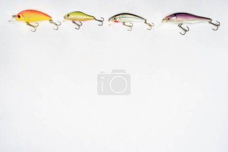 elevated view of various fishing bait placed in row isolated on white background