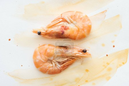 top view of tasty shrimps on white tabletop with watercolor strokes