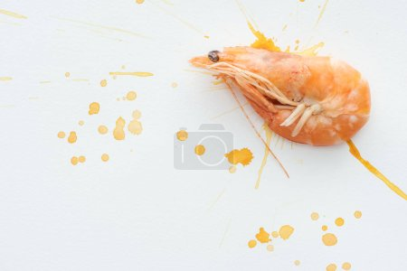 top view of raw shrimp on white tabletop with watercolor blots