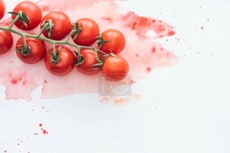 Photo for Top view of branch of tasty tomatoes on white surface with red watercolor strokes - Royalty Free Image