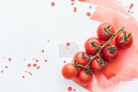 Photo for Top view of branch of delicious cherry tomatoes on white surface with red watercolor strokes - Royalty Free Image