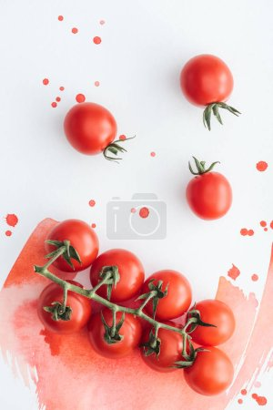 top view of branch of tasty cherry tomatoes on white surface with red watercolor strokes