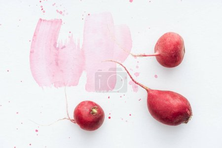 Photo for Top view of ripe radishes on white surface with pink watercolor strokes - Royalty Free Image