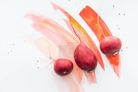 Photo for Top view of fresh radishes on white surface with red watercolor strokes - Royalty Free Image