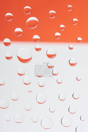 close-up view of transparent calm dew drops on white and orange background