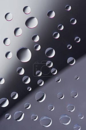 close-up view of transparent calm dew drops on grey background