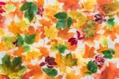 """Постер, картина, фотообои """"вид сверху упал Осенний клен листья на деревянные поверхности"""""""