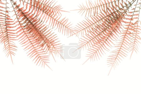 Photo for Top view of arranged beautiful red fern branches isolated on white - Royalty Free Image