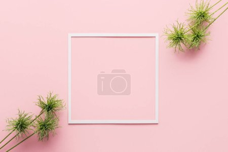 Photo for View from above of arranged green plants and white frame on pink - Royalty Free Image