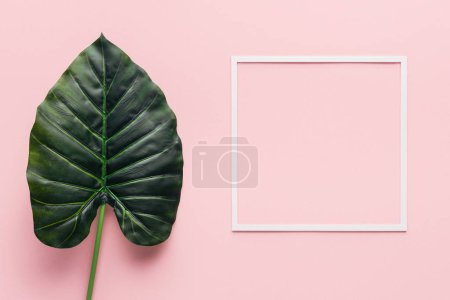 top view of green palm leaf and white frame on pink, minimalistic concept