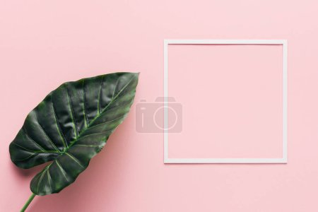 Photo for Flat lay with white square and palm leaf on pink, minimalistic concept - Royalty Free Image