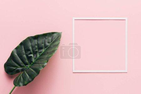 Photo pour Plat posé avec carré blanc et feuille de palmier sur rose, concept minimaliste - image libre de droit