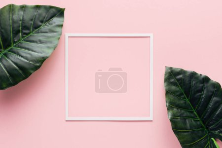 Photo for Top view of white square and palm leaves on pink, minimalistic concept - Royalty Free Image