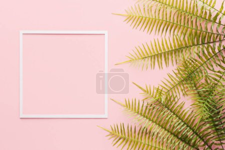 flat lay with fern branches and white frame on pink