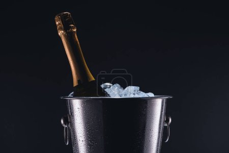 close up view of bottle of champagne in bucket with ice cubes isolated on black